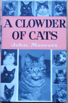 clowder of cats