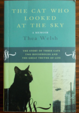 The Cat Who Looked At The Sky